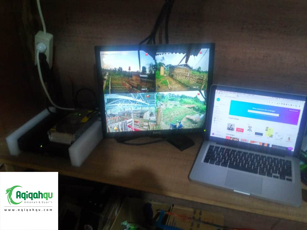 kandang kambing dan domba untuk aqiqah canggih dengan CCTV